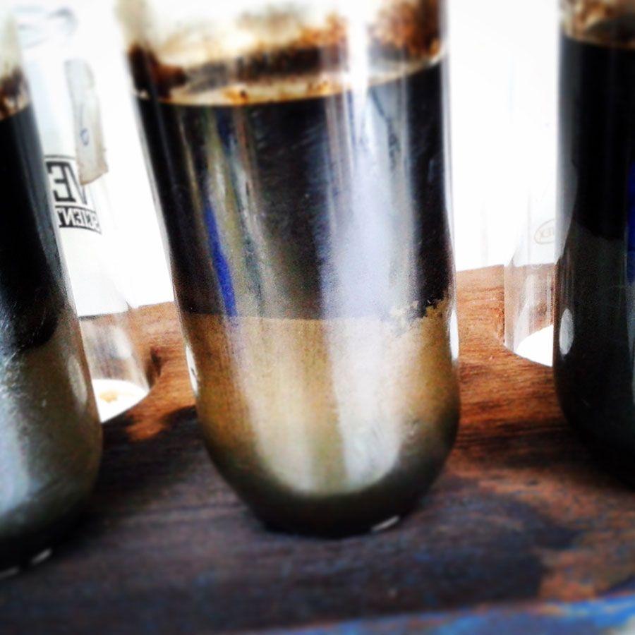 Eco-Oil reconhecida pelo SIFIDE