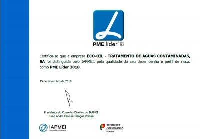 2018 award of SME Leading Company